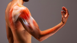 What is muscle spasticity?