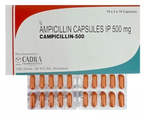 Principen 500mg capsules (Generic Equivalent)